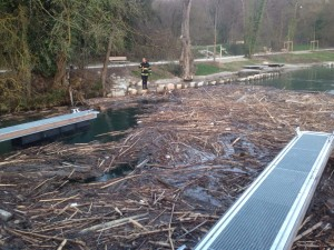 Accumulation de bois sur le Rhône